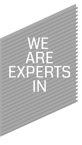 We are experts in many fields.